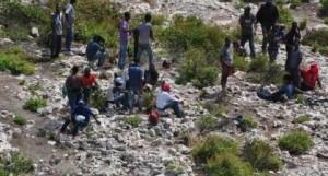 Abandonan 70 indocumentados haitianos en la isla de Mona
