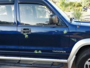 """Dejaron las piedras… Ahora disparan con pistolas """"Gotcha"""" desde el puente peatonal de la PR-2 en Mayagüez"""