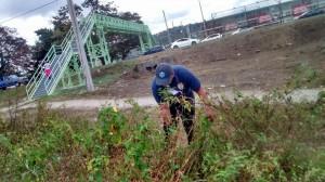 Esfuerzo comunitario para limpiar alrededores de puente peatonal en Mayagüez
