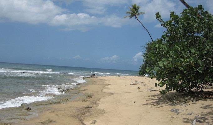 playa barrio puntas rincon