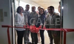 """Gobierno convierte en """"potrero"""" para cuarentena de caballos parte del Aeropuerto de Aguadilla"""