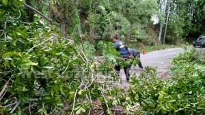 ¿Qué paso en el Suroeste tras el paso de Erika?