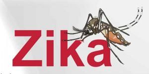 Cerrando el año sigue en aumento incidencia de Zika en Puerto Rico