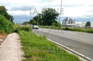 La carretera 64, entre las antiguas atuneras y el barrio Maní de Mayagüez, es escenario frecuente de carreras clandestinas (Archivo LA CALLE Digital).