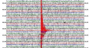 Red Sísmica destaca importancia del ejercicio de tsunami Caribe Wave 2017