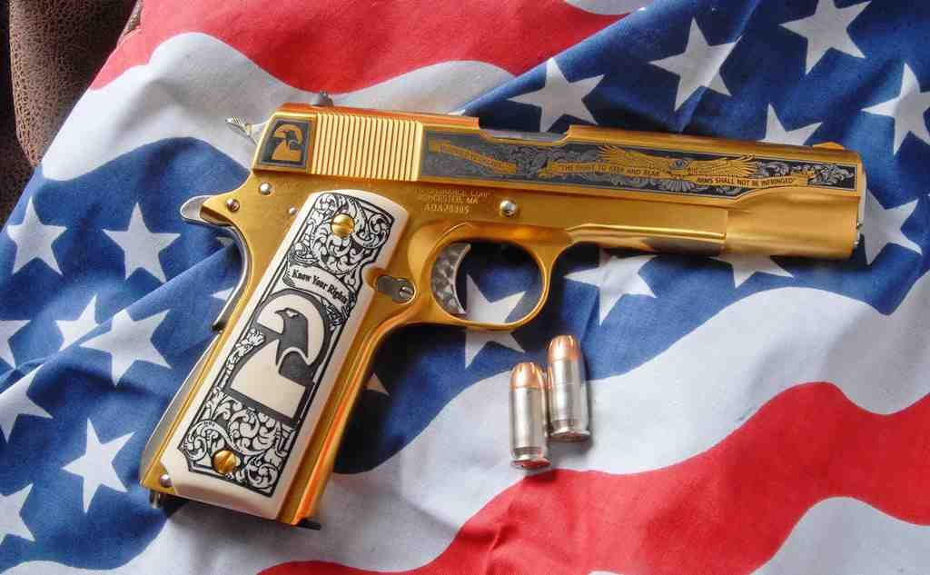 pistola segunda enmienda