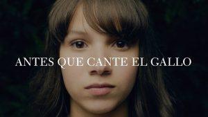 Antes que cante el gallo… Excelente cine puertorriqueño para un público adulto
