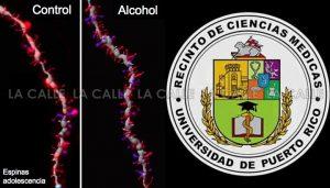 """Investigación del Recinto de Ciencias Médicas revela que el alcoholismo no es """"hereditario"""""""