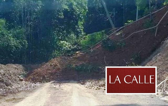 Tramo obstruido de la carretera PR-446 de San Sebastián (Suministrada/Prensa Cámara).