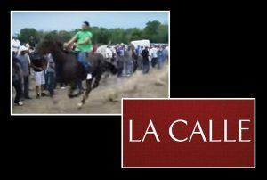 """Ocupan drogas y armas… """"Le meten mano"""" anoche a hipódromo clandestino en Hormigueros"""