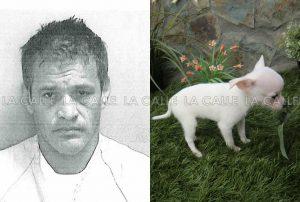 Autoridades revelan la ficha del sujeto que le arrancó la cabeza de un mordisco a perrito en Lares