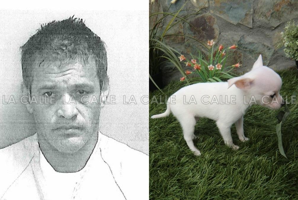Foto de la ficha de Luis A. Arroyo Arroyo, quien en medio de un incidente de violencia doméstica, decapitó un perrito parecido a este (Suministrada/Policía).