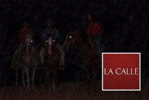 Ante aumento en accidentes… Municipio de Cabo Rojo reactiva restricciones a cabalgatas y tránsito de bestias de carga