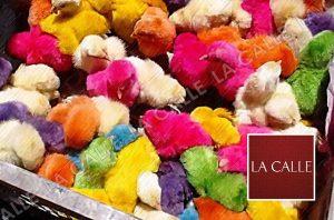 """Piden que se prohíba la venta de pollitos de colores en """"Cinco días con nuestra tierra"""" en el RUM"""