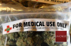 """Certificarán pacientes de """"Cannabis Medicinal"""" este miércoles en feria de salud en la Plaza Colón de Mayagüez"""