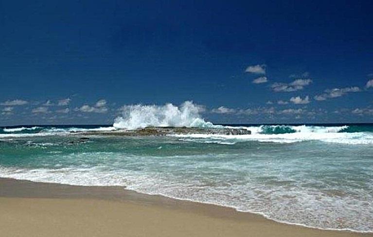 Playa Montones de Isabela (Foto/Internet).