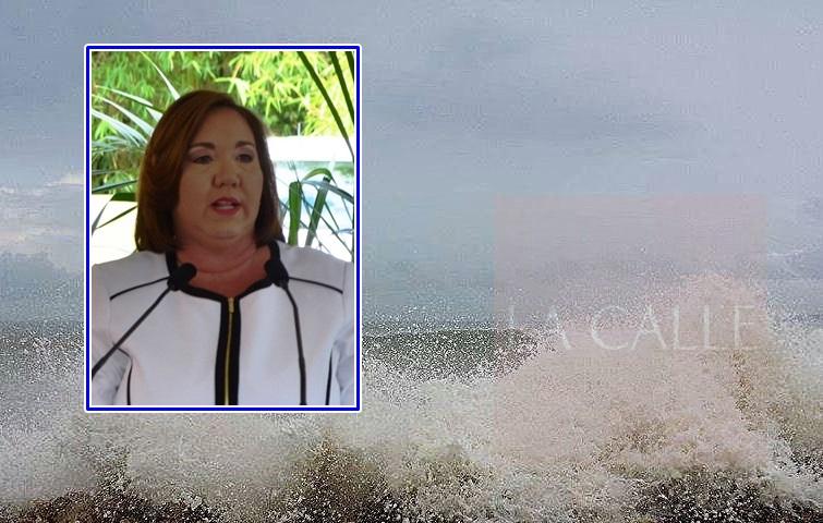 La representante Maricarmen Mas levantó bandera sobre el riesgo del fuerte oleaje en la carretera PR-102 (Fotomontaje/LA CALLE Digital).