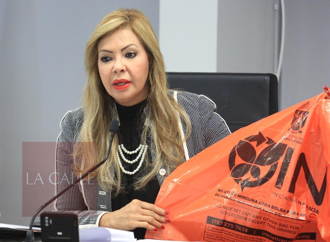 La senadora Evelyn Vázquez durante las vistas sobre la bolsas anaranjadas (Suministrada).
