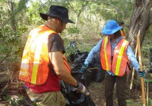 UPR Aguadilla colabora con proyecto de restauración del hábitat de la iguana en Isla de Mona