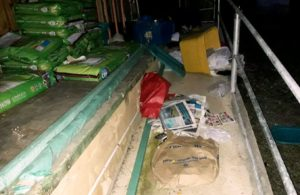 Continúa petición de ayuda urgente para Santuario de Animales de Cabo Rojo saqueado por los pillos