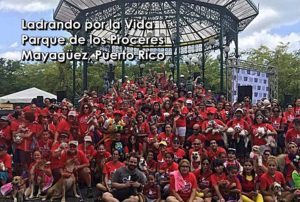 """""""Ladrando por la Vida"""" este domingo en el Parque de los Próceres de Mayagüez"""