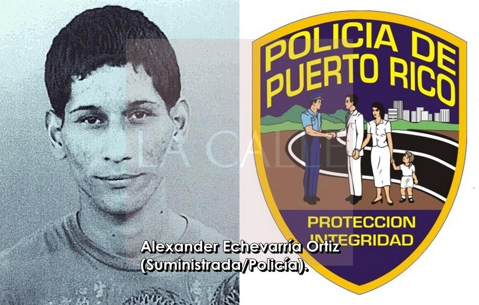 Alexander Echevarria Ortiz-tile wm