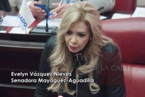 """Evelyn Vázquez: """"Ponerle candado a CROEM no es una opción"""""""