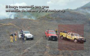 Se queman más de 86 cuerdas de terreno esta tarde en Yauco