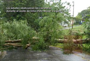 Resumen de daños del Huracán Irma en Hormigueros y Añasco (Fotos)