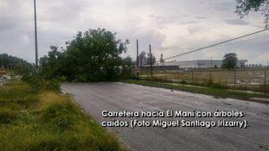 90% sin luz… Mayagüez sin mayores incidentes que lamentar