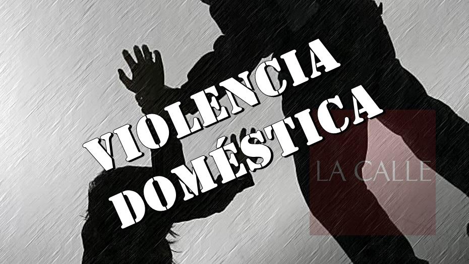 violencia domestica logo wm