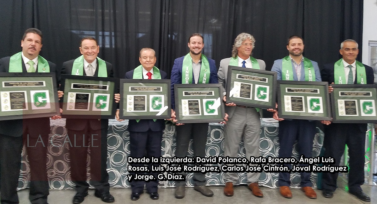 Pabellon del Deporte Colegial 2017 wm