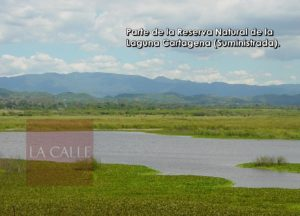 Representante busca cambiar nombre de la Reserva Natural de Lajas