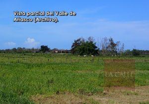 Esperan firma del Gobernador en proyecto que declara el Valle de Añasco como reserva agrícola