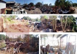 """Contraloría revela distribución """"por la libre"""" de asfalto en la regional del DTOP en Mayagüez (Fotos)"""