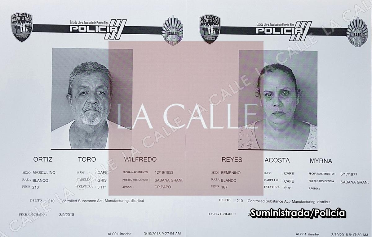 Fichas Wilfredo Ortiz Toro-Myrna Reyes Acosta wm