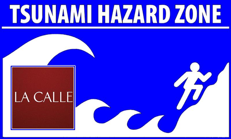tsunami ready logo wm