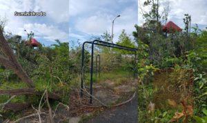 Entidades sin fines de lucro y comunidad se unen para rescatar parque abandonado en Aguadilla