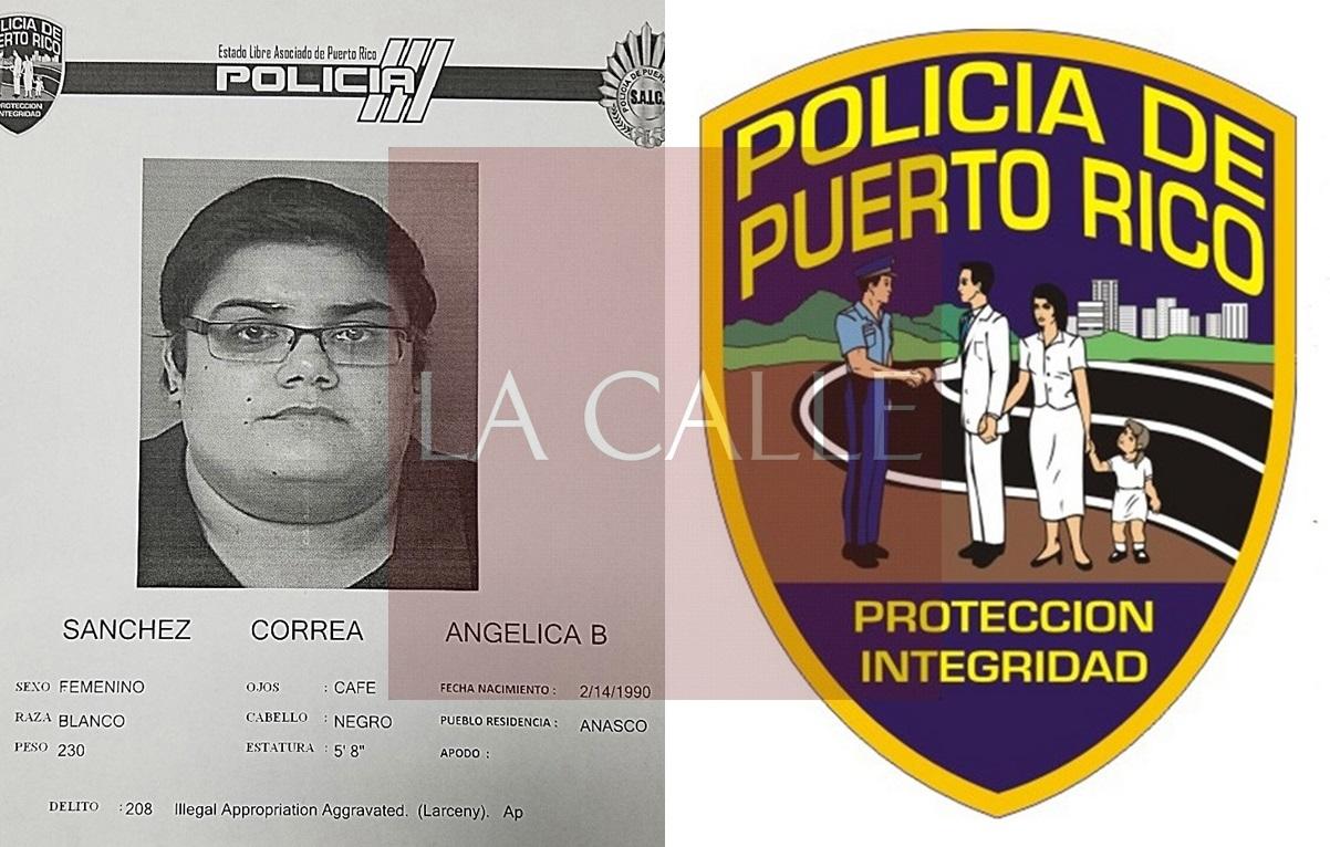 Ficha Angelica Sanchez Correa-tile wm