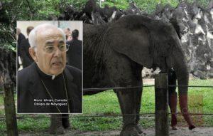 """Obispo de Mayagüez le """"echa la bendición"""" a Mundi para que se quede"""